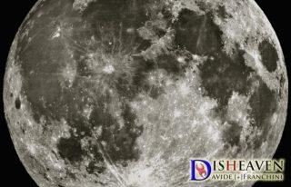 davide franchini dream moon