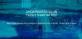 Underwater Club Fauna e oceani del 2020 davide franchini