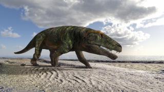 Scoperte orme fossili di grandi rettili sulle Alpi occidentali davide franchini