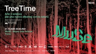 Tree Time davide franchini muse trento